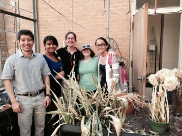 Brian, Yusra, Jackie, Karina & Vanessa are ready to help bring the DomU greenhouse back to life!