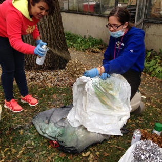 "Trinity Volunteer Jackie Finn and Dominican Universtiy student Yusra Akhlaq are ""utility players"" working on a lot of different projects throughout the university as needed. Jackie is especially fond of working in the Athletic Department with the basketball and volleyball teams; she makes sandwiches and fruit cups in the kitchen and helps with the library dusting project. Here they are working in the greenhouse."